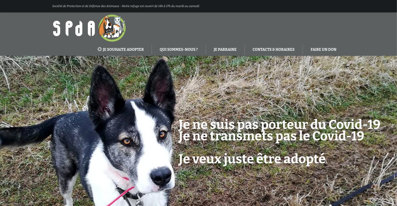 Webdesign pour la SPDA, home page COVID